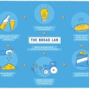 bread_lab