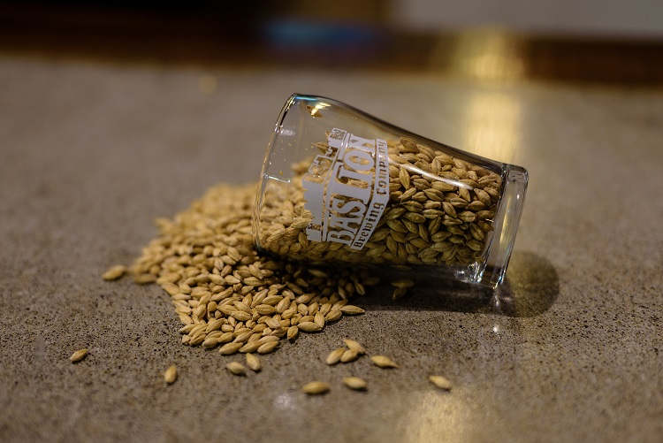 Bastion_Brewing_Malt_Barley