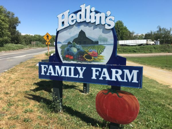 hedlin_farms_laconner_skagit_valley_malting